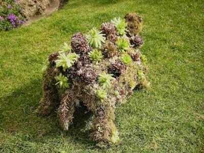 как сделать зеленую скульптуру топиари своими руками