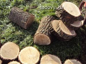как сделать садовую дорожку из спилов дерева своими руками