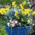 как сделать маленькую цветочную клумбу во дворе своими руками