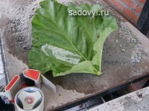 как делать декор для сада своими руками