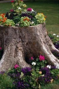 пень в саду, интересные идеи