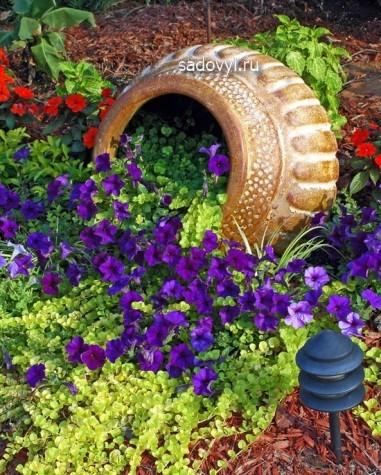 красивая клумба из петуний фото