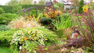 интересные идеи для сада, перепад высот на участке