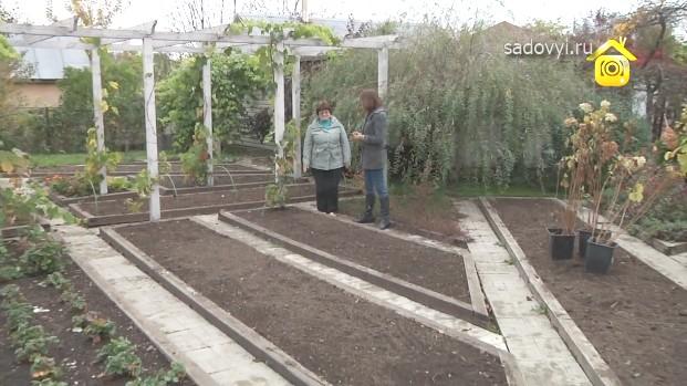 Идеи для сада и огорода видео