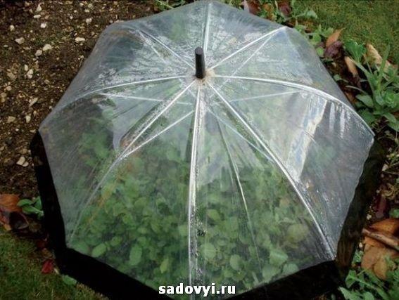 Небольшие советы для вашего загородного дома