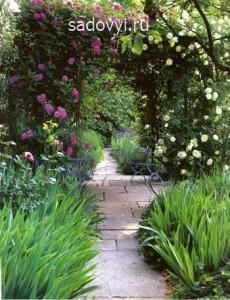как сделать садовые арки и перголы своими руками