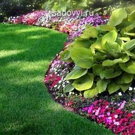 как оформить красивый цветник, идеи для сада