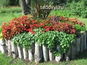 4 - Обустройство загородного дома и участка своими руками - Декоративные растения с красивыми листьями для сада. Примеры миксбордеров