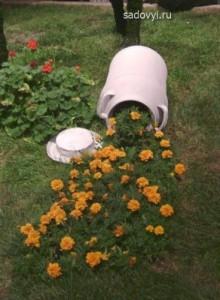 садовые клумбы с бархатцами, фото