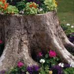 1b20f37f00a70de4dc3ddb92638f9ae61 - Обустройство загородного дома и участка своими руками - Как украсить пень в саду. Интересные идеи