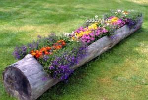 красивый пень в саду, интересные идеи