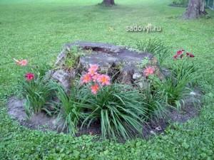 как украсить пень в саду, фото