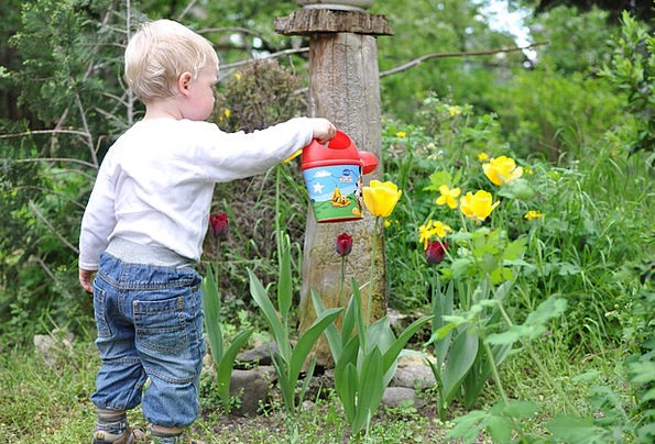 Child-Youngster-Garden-Kid-Watering-Flower-Boy-Fre-6450