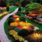 Mixborder na dache - Обустройство загородного дома и участка своими руками - Особенности подбора растений для большого миксбордера