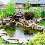 prud na dashe - Обустройство загородного дома и участка своими руками - Как сделать самоочищающийся пруд своими руками