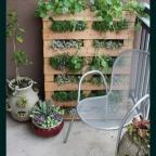 6WX0yYw1cZU - Обустройство загородного дома и участка своими руками - Вертикальный цветник в поддонах, 7 фото