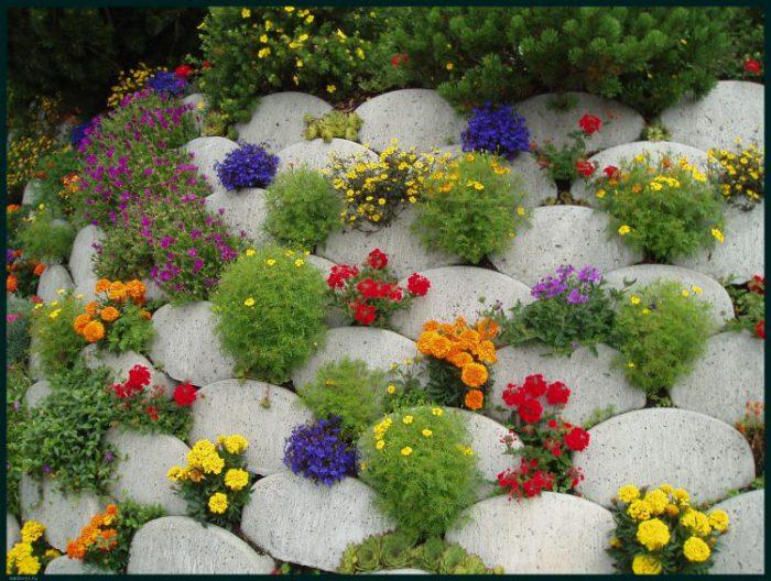 1361 750x566 1 - Обустройство загородного дома и участка своими руками - Многолетние цветы для дачи, обзор