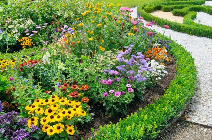 2623b0 1024x676 1 - Обустройство загородного дома и участка своими руками - Многолетние цветы для дачи, обзор