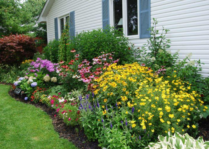 44bec1164f55906cd70fbf04badfd1076c751057939a3bbf0fd7bbeb8206910b - Обустройство загородного дома и участка своими руками - Многолетние цветы для дачи, обзор